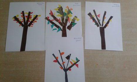 Jesienne drzewa
